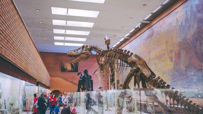 Park dinozaurów – Polska ma swój